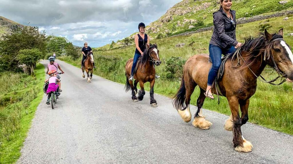 image of cycling past horses on the Gap of Dunloe in Killarney NP Ireland