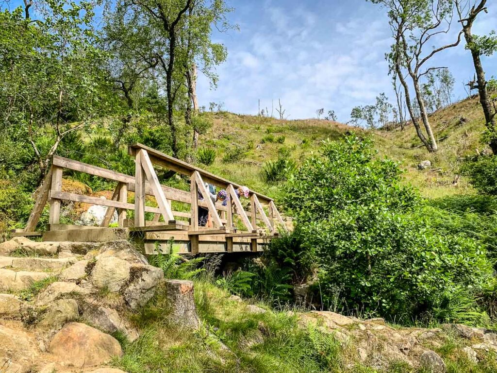 image of a wooden bridge with kids looking over the edge