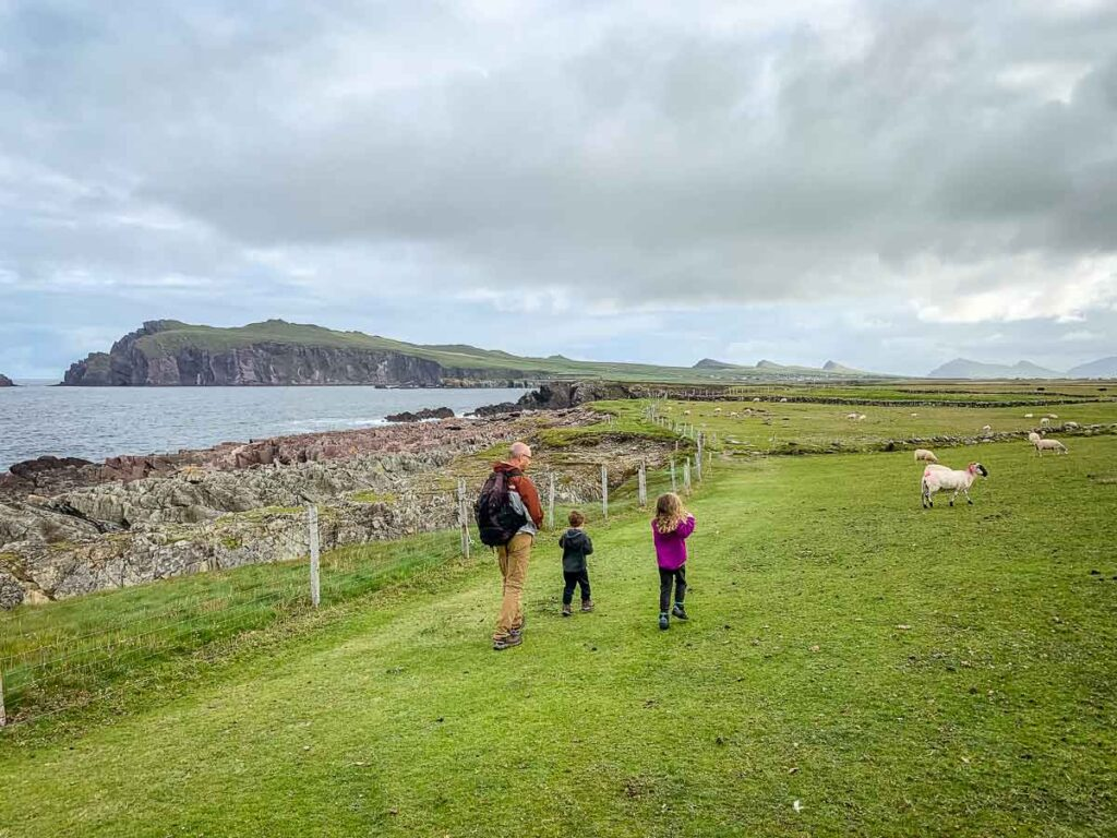 image of father and two kids walking along Clogher Beach Loop on Dingle Peninsula Ireland