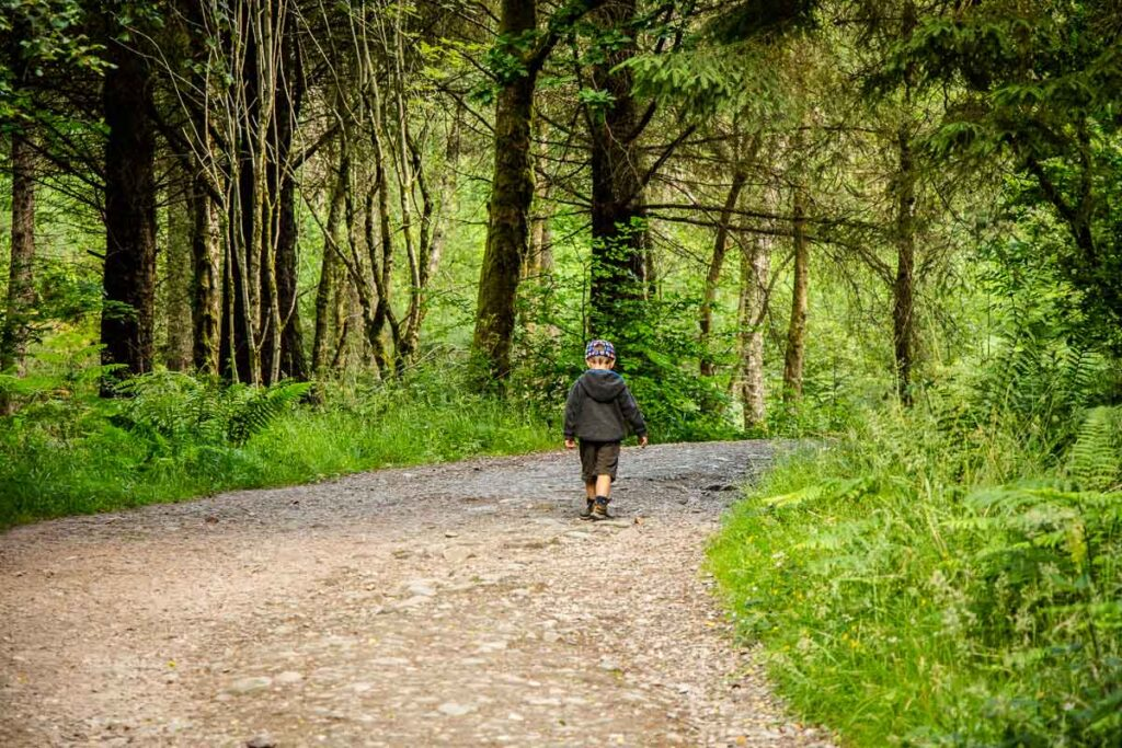 image of boy in grey hoodie and shorts walking on rocky hiking trail surrounded by trees