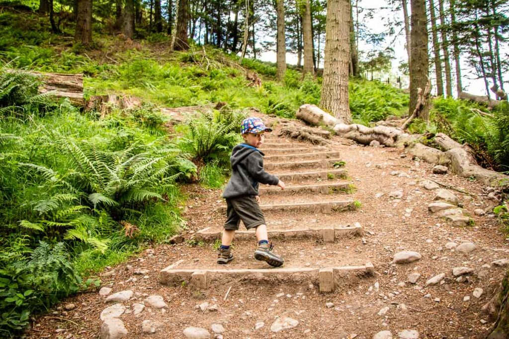 image of boy looking back at camera while hiking up steps on Conic Hill hike in Loch Lomond National Park Scotland