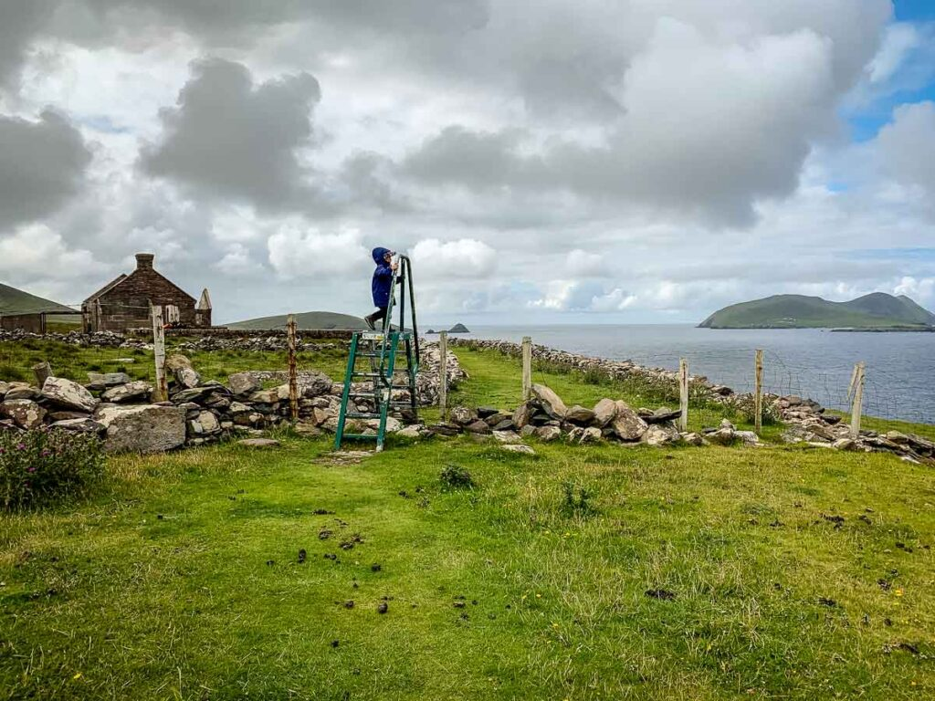 image of boy climbing ladder over fence along Dun Chaoin Coastal Loop on Dingle Peninsula