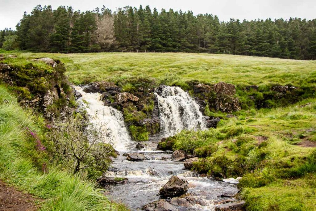 image of waterfalls with grass and trees surrounding them on Isle of Skye Scotland