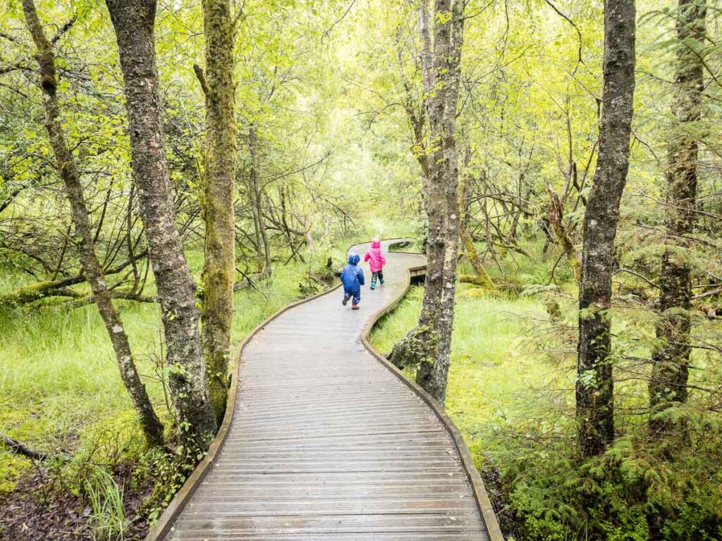 image of two kids in rain jackets running on wooden boardwalk in Queen Elizabeth Forest Park Scotland