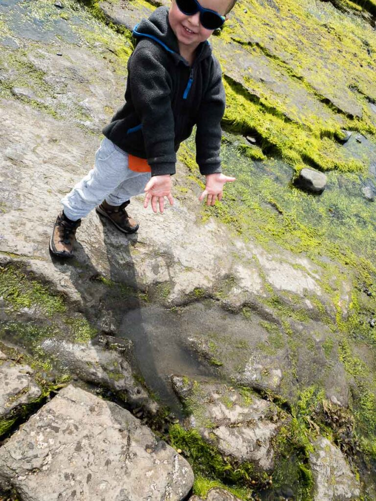 image of boy pointing out dinosaur tracks on slipaway beach isle of skye