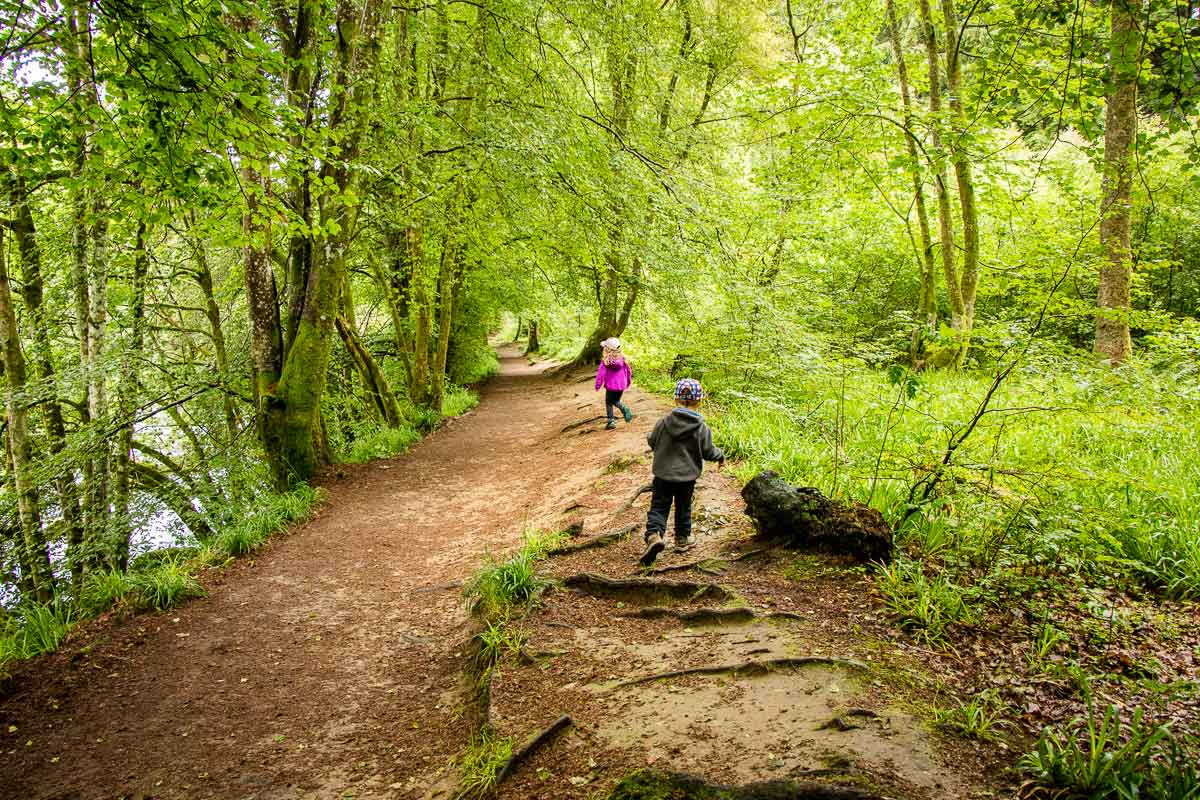 image of kids walking the trail Hermitage Woodland Walk in Tay Forest Park