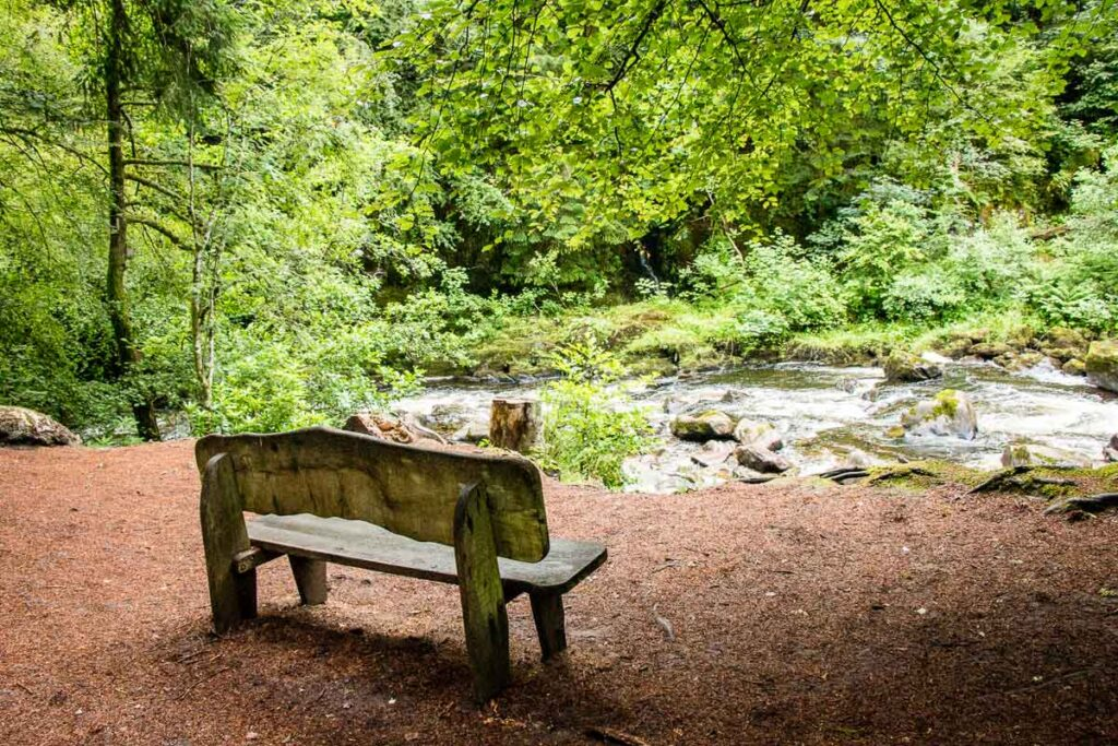 image of bench overlooking river and forest in Tay Forest Park in Scotland