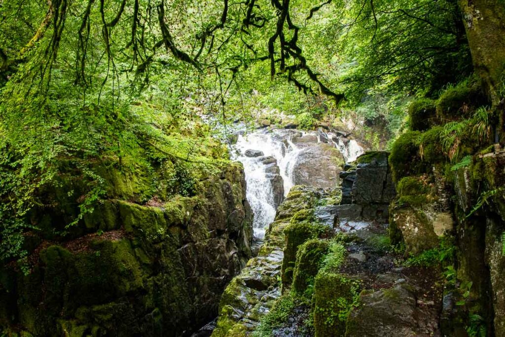 image of waterfall in forest along the Hermitage Woodland Walk in Tay Forest Park Scotland