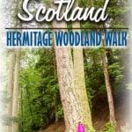 Tay Forest Park Walks in Scotland - Hermitage Woodland Walk