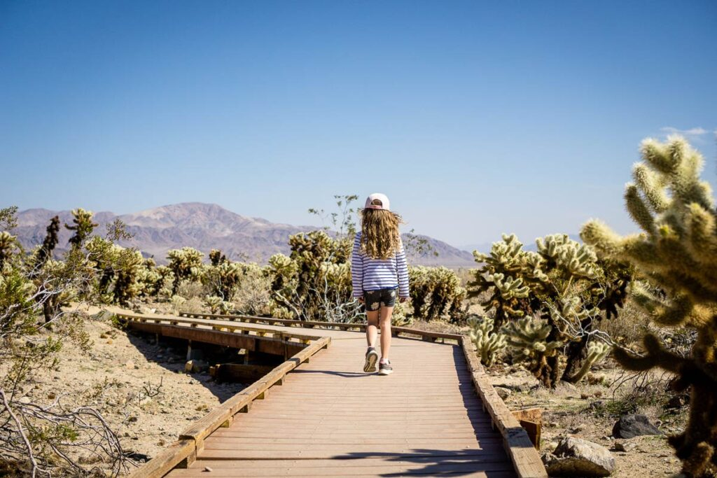 image of girl walking in Cholla Cactus Garden in Joshua Tree National Park