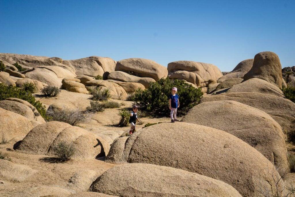image of girl climbing rocks in Joshua Tree NP with kids