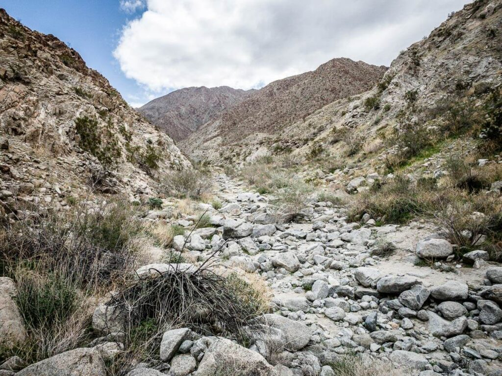 image of one of the good hikes in palm springs - the wilderness loop