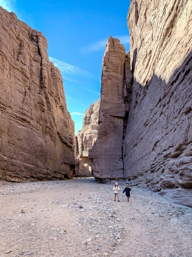 image of kids hiking in ladder canyon near palm springs