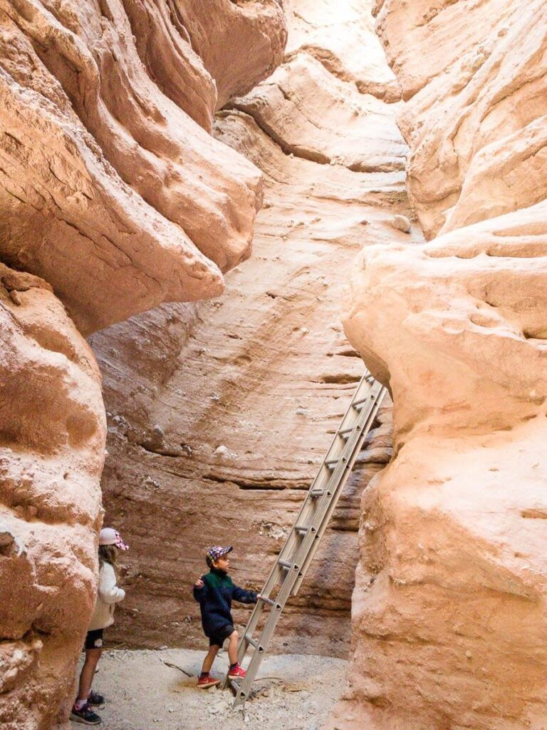 image of ladder in ladder canyon near palm springs