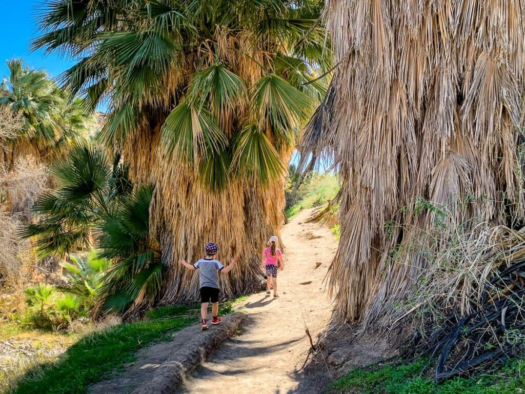 image of two kids on one of the hikes near palm springs california