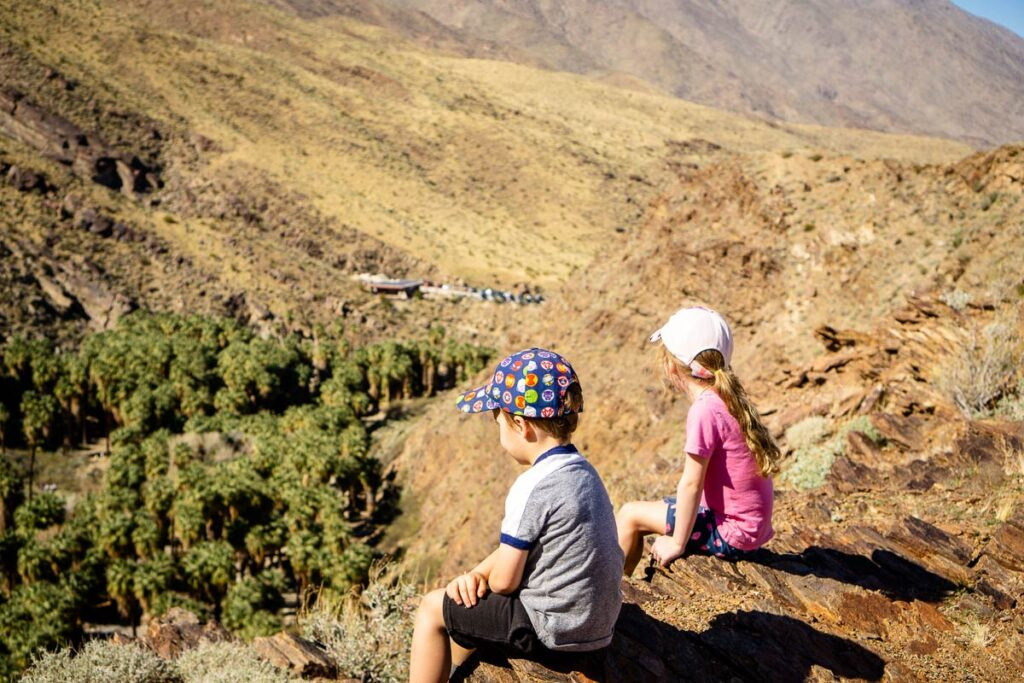 image of kids looking down at Palm Oasis from Victor Loop Trail in Palm Springs