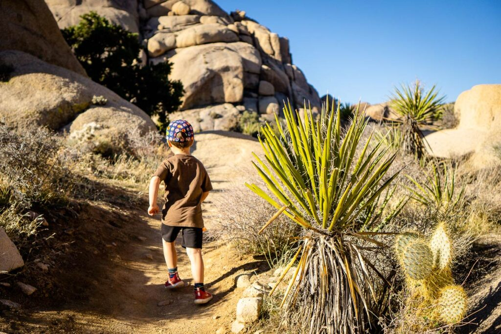 image of boy on one of the best hikes in joshua tree NP with kids