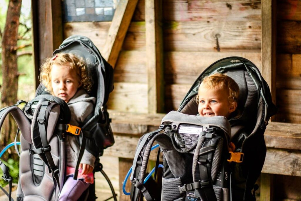 image of toddlers in hiking carrier for kids