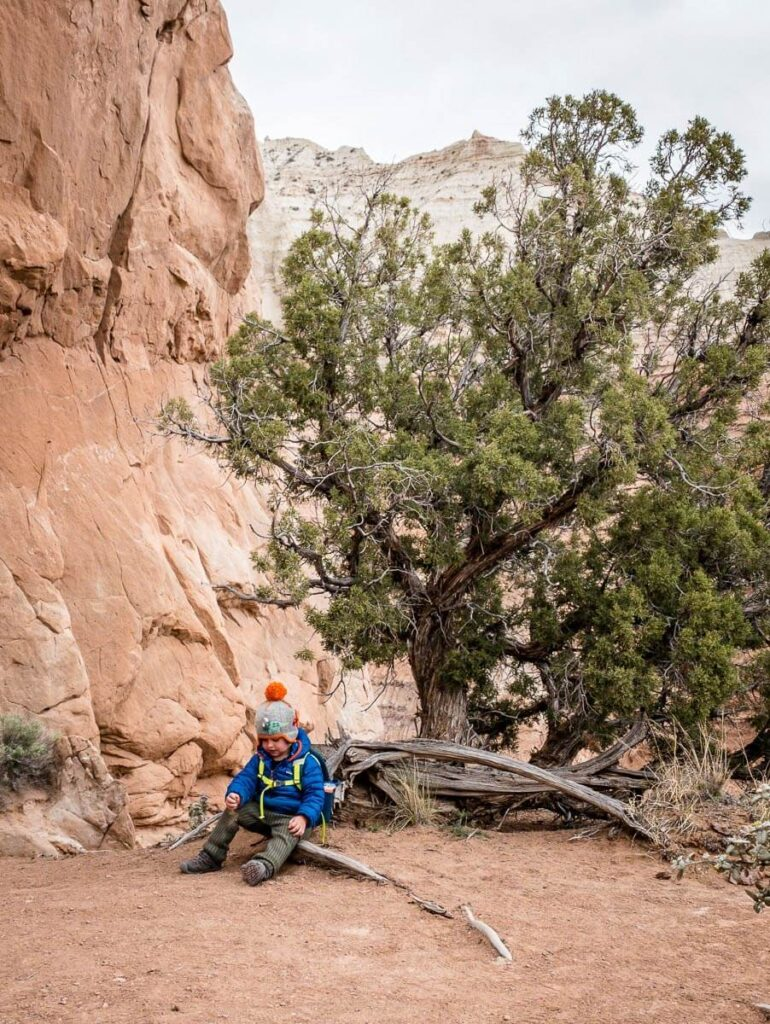image of boy hiking in utah