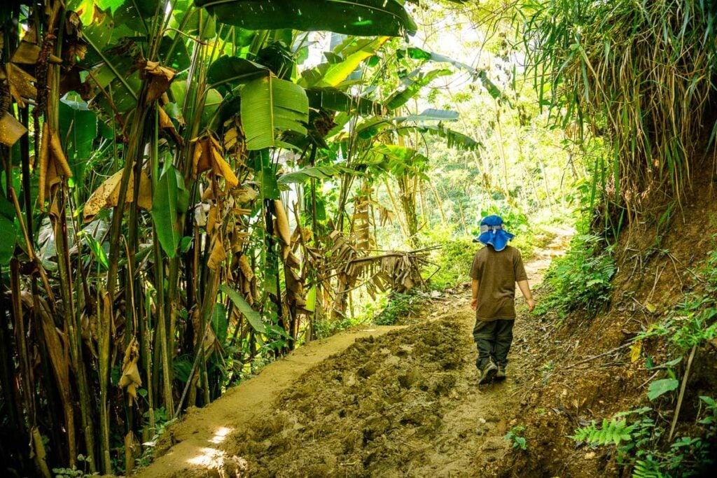 a boy enjoys a muddy stretch on the lost city trek colombia