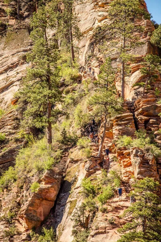 image of the trail along the Hogsback along the Angels Landing hike in Utah
