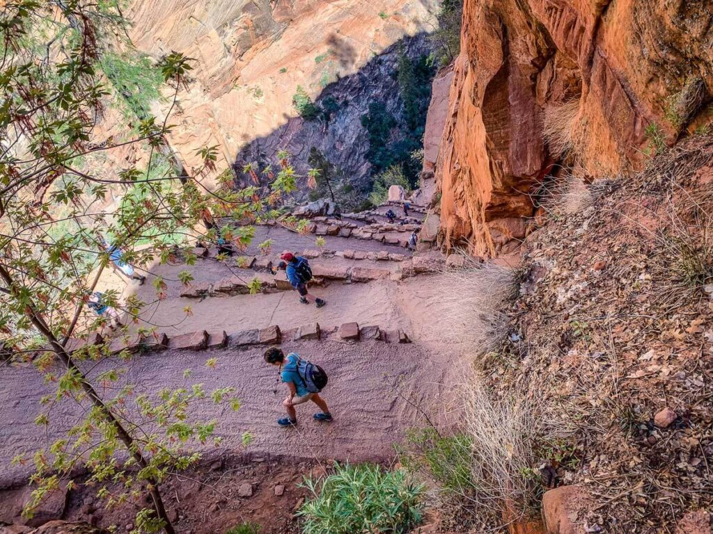 image of Walters Wiggles on Angels Landing trail in Zion