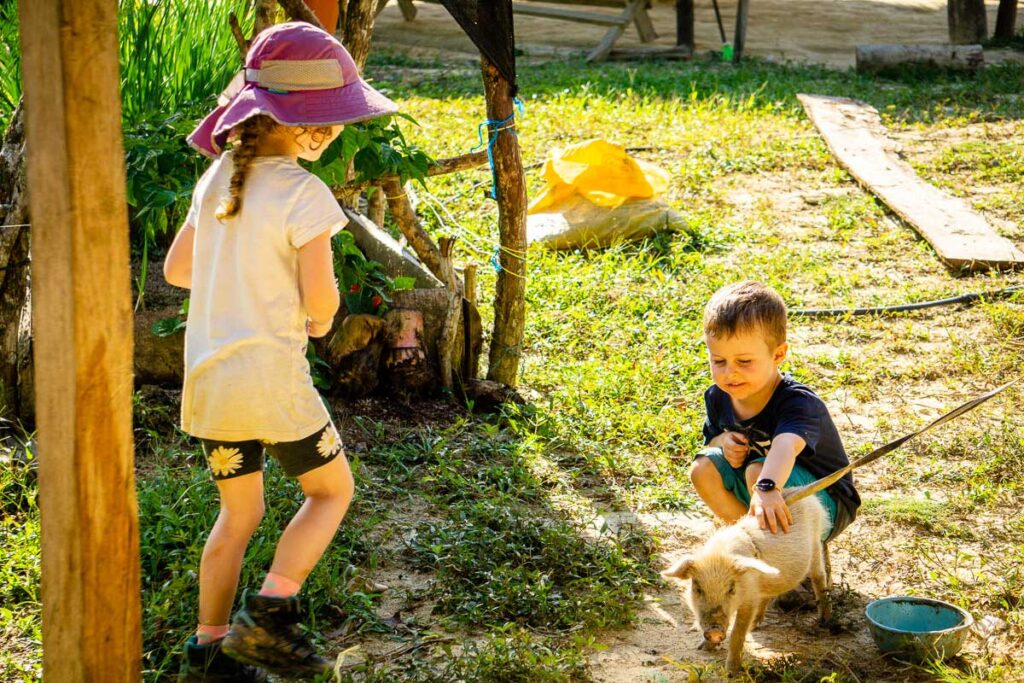 Kids play with a baby pig on the Ciudad Perdida trek