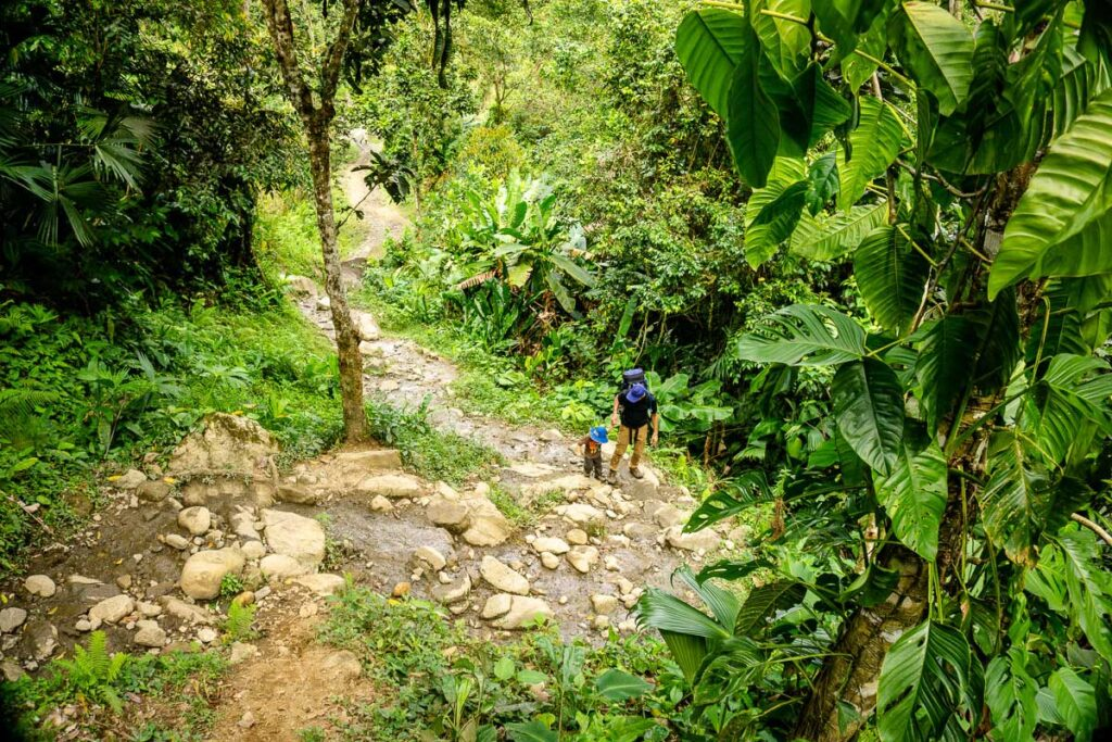 The Lost City Colombia trek can be steep and rocky