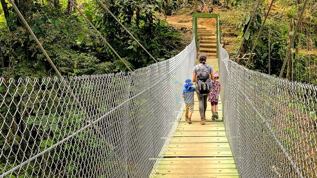 The new bridges on the Ciudad Perdida trek reduces the number of river crossings on the trek
