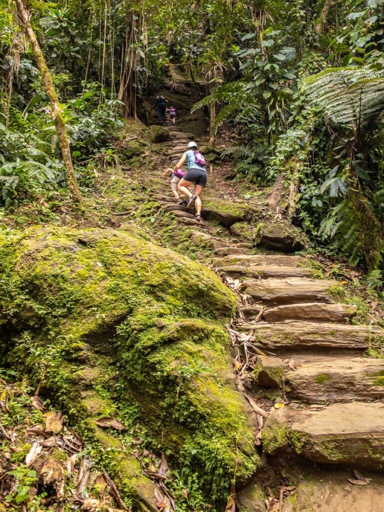 The 1200 steps from Camp 3 to the Lost City Colombia are steep