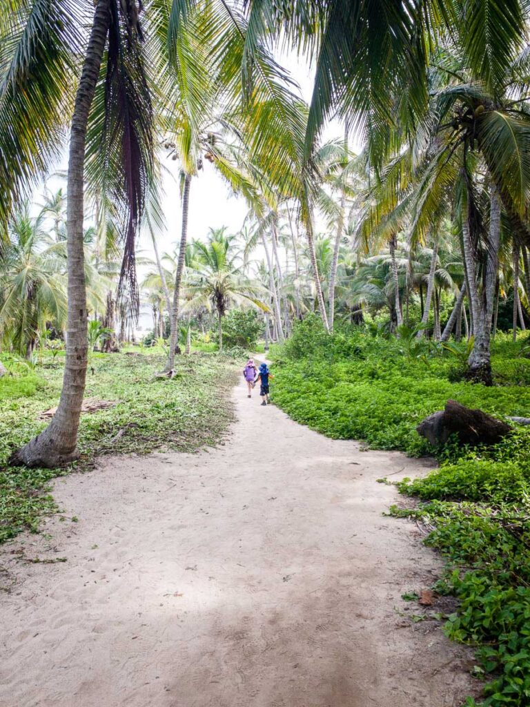Kids enjoy hiking through the jungle in Tayrona Colombia