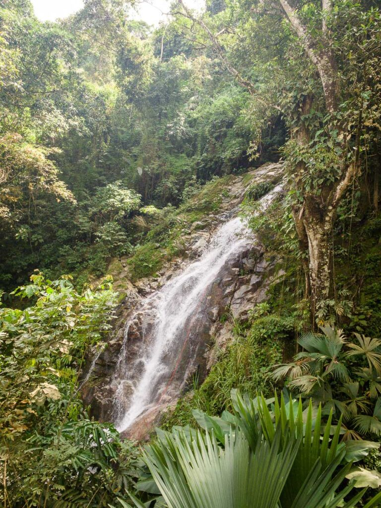 The beautiful jungle setting of the Marinka waterfall near Minca, Colombia