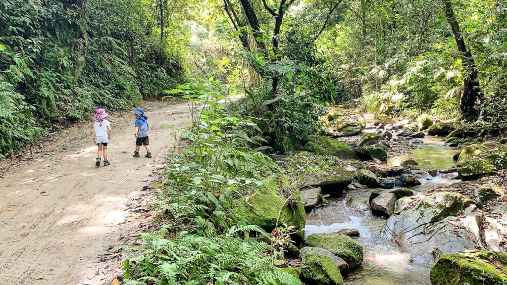 A riverside walk to the Marinka Waterfall near Minca, Colombia