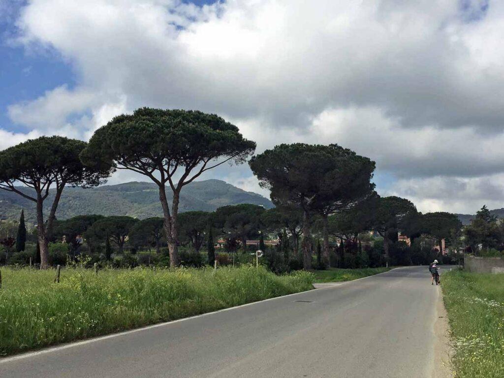 We enjoyed riding our rental bikes from Portoferraio to Bagnaia
