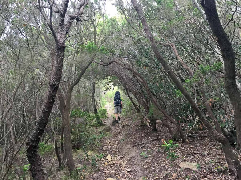 hiking Monte Poppe