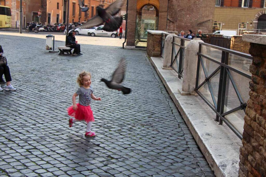 There are millions of pigeons in Rome - kids will chase every one