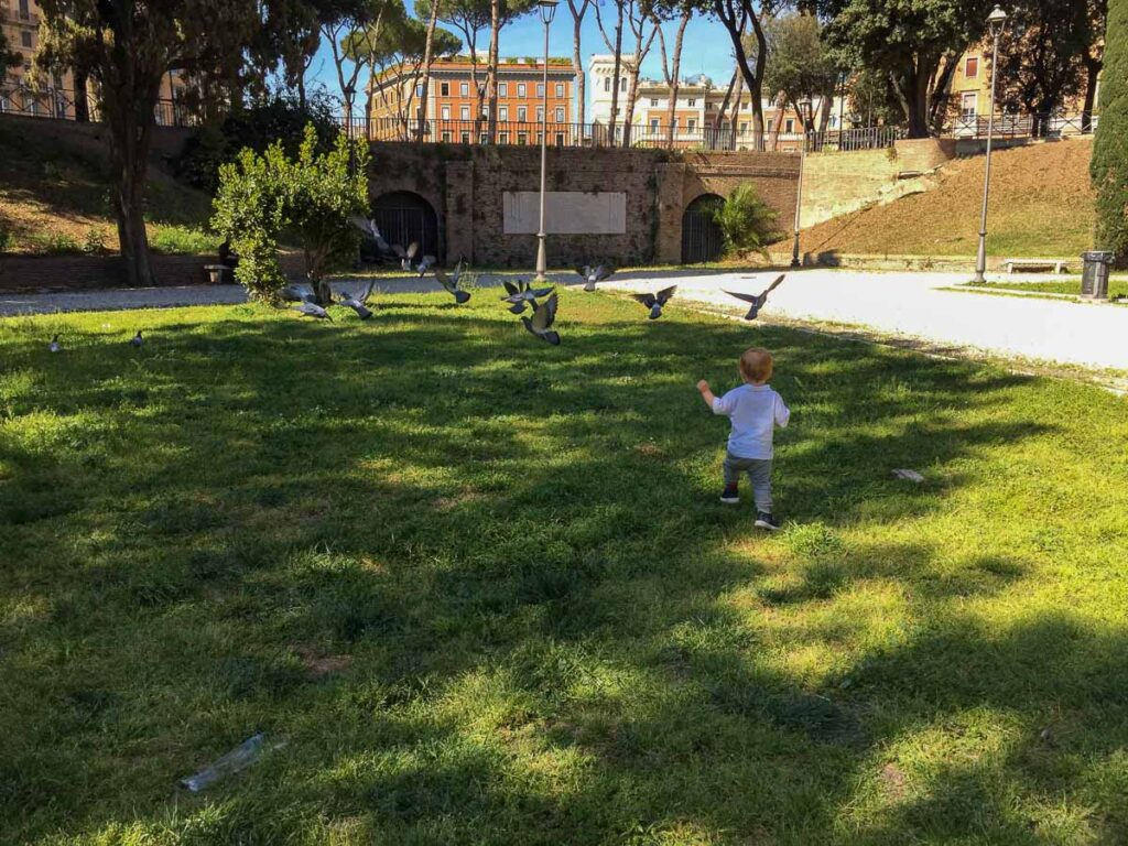 visiting Rome with a toddler means watching them endlessly chase pigeons