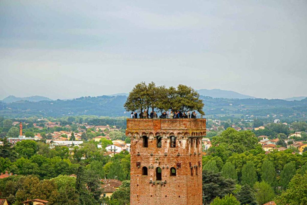The Guiniji Tower is one of two climbable towers in Lucca, Italy
