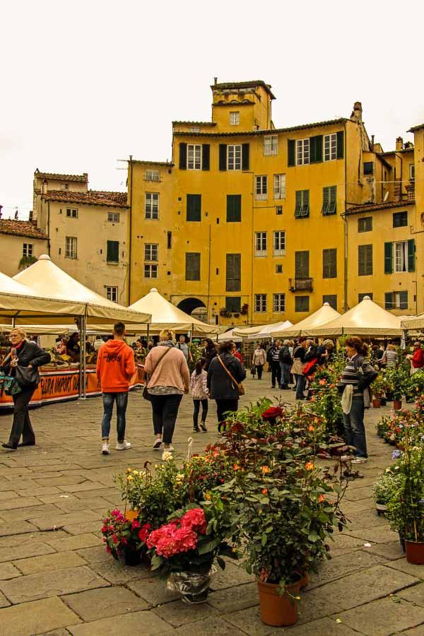 Exploring Lucca with kids - flower market in Anfiteatrp Plaza