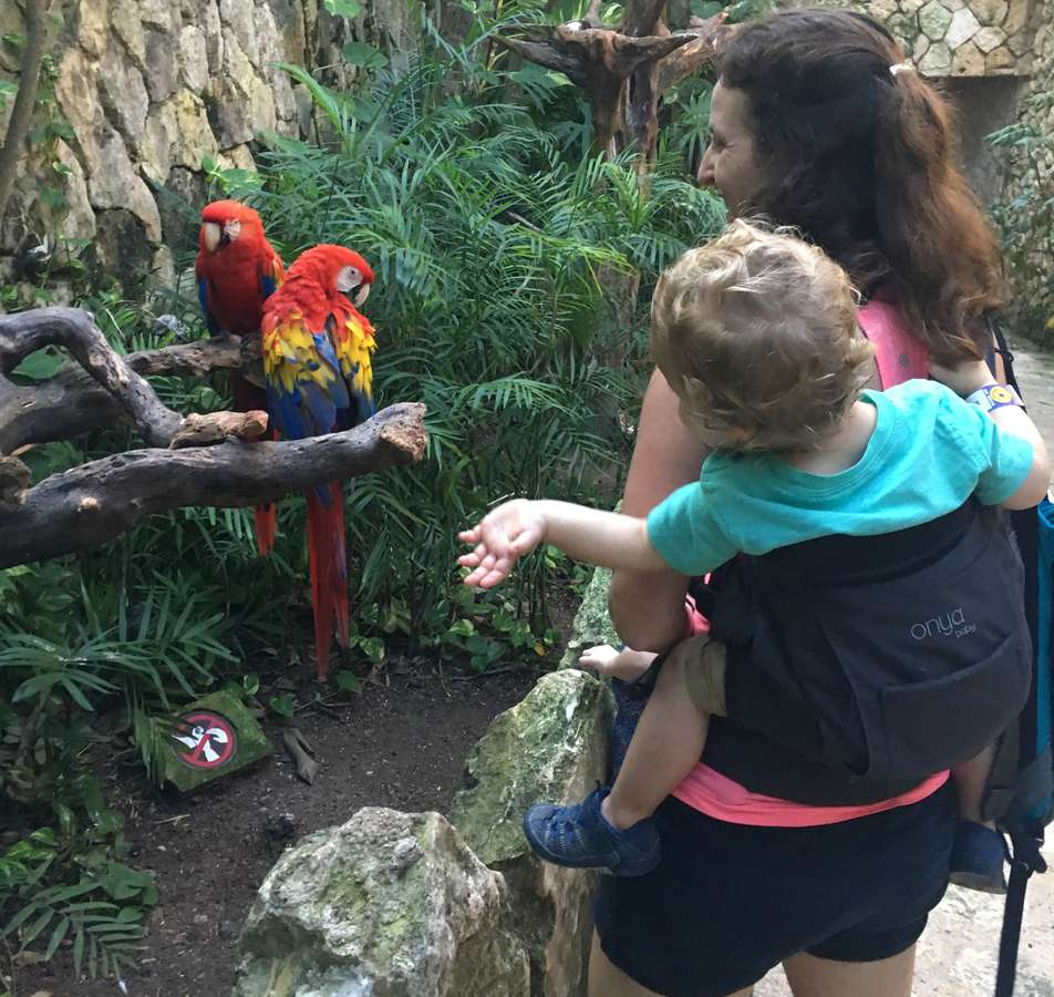 There are so many things to do at Xcaret with a toddler