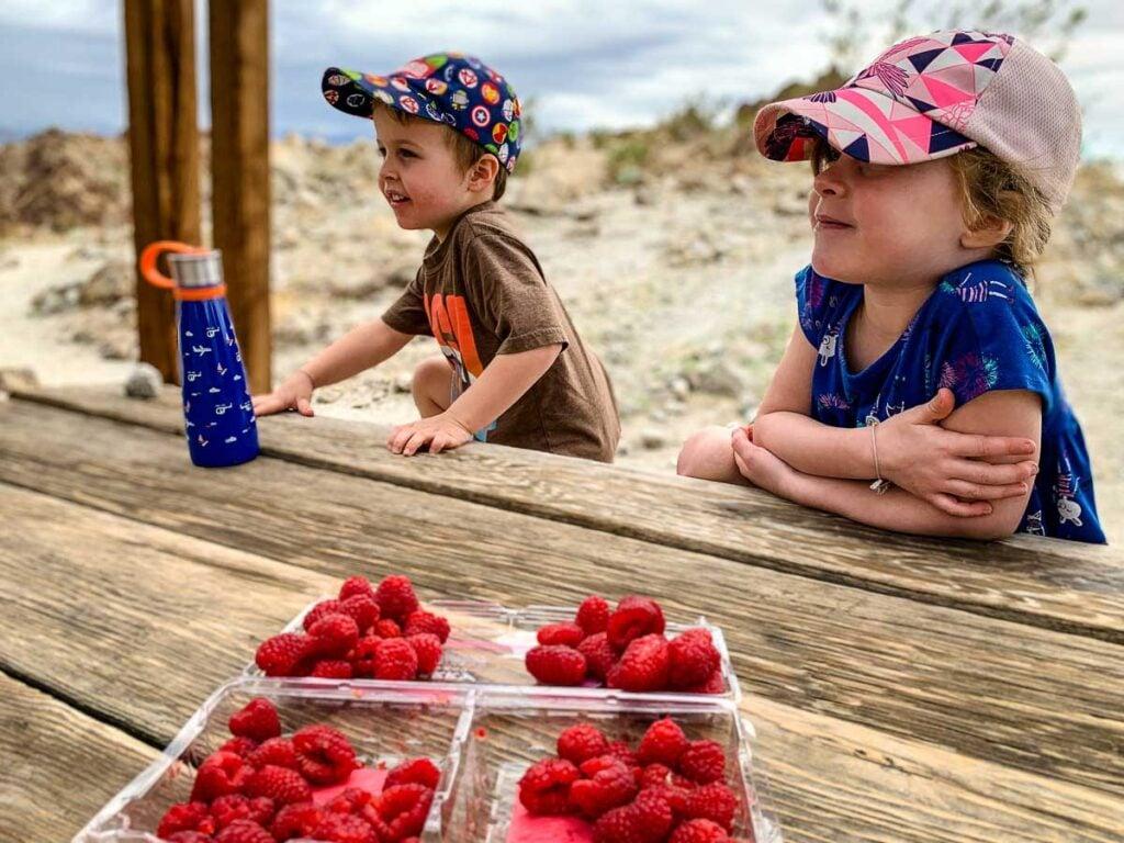 Kids enjoying raspberries on a family picnic while hiking in Palm Desert