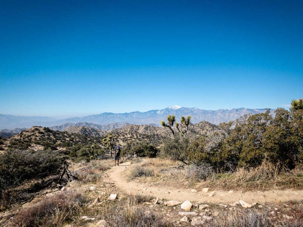 Joshua Tree family-friendly hikes - Panorama Trail - Black Rock Canyon