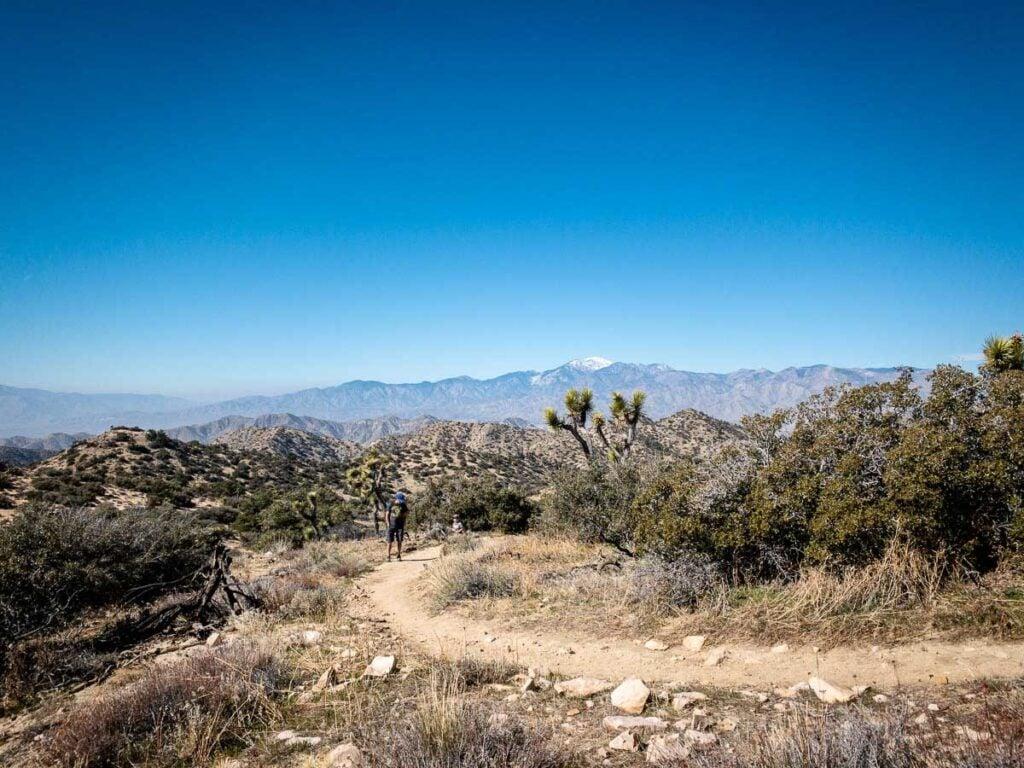Joshua Tree family-friendly hikes - Panorama Trail - Black Rock Canyon