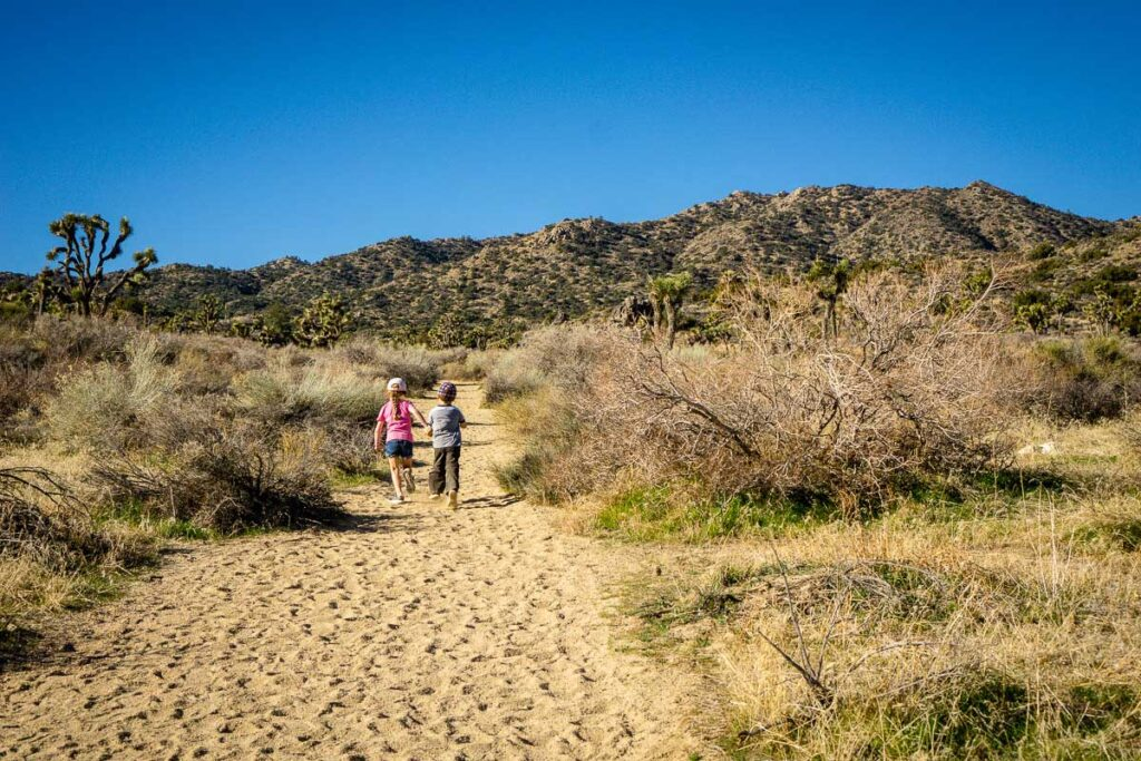 The Black Rock Canyon hiking trail is a kid-friendly wide, sandy trail