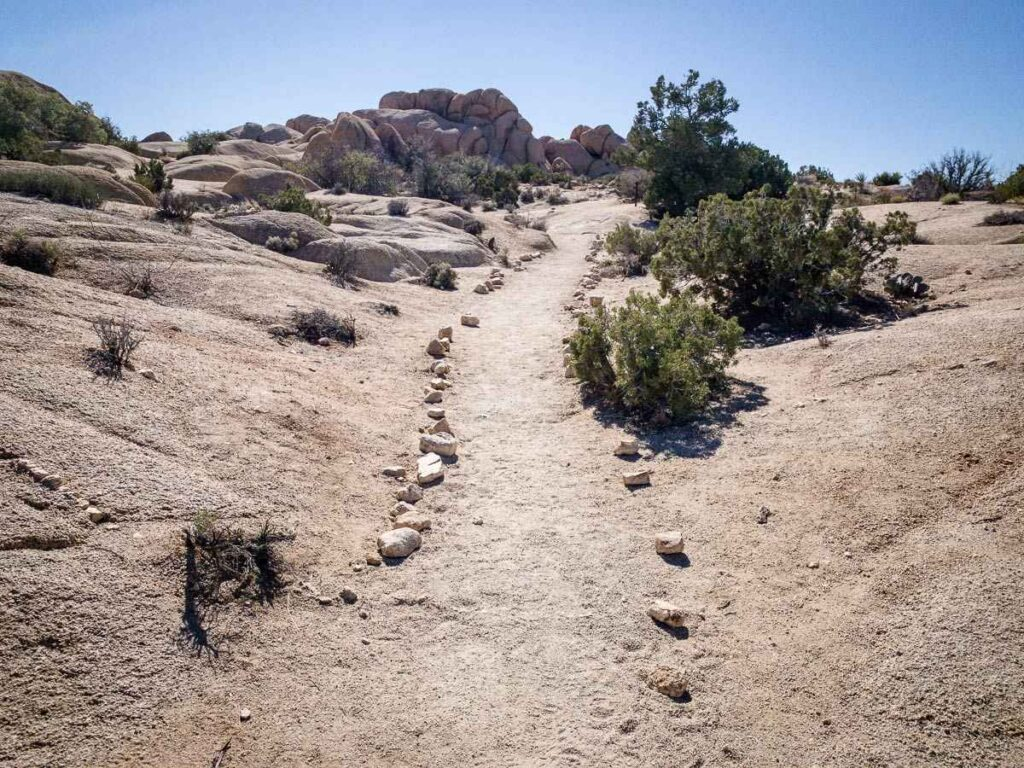 Is there easy hiking in Joshua Tree National Park? Try the Skull Rock hike