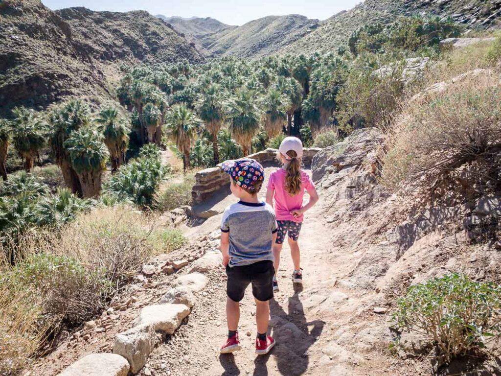 family-friendly palm canyon trail palm springs