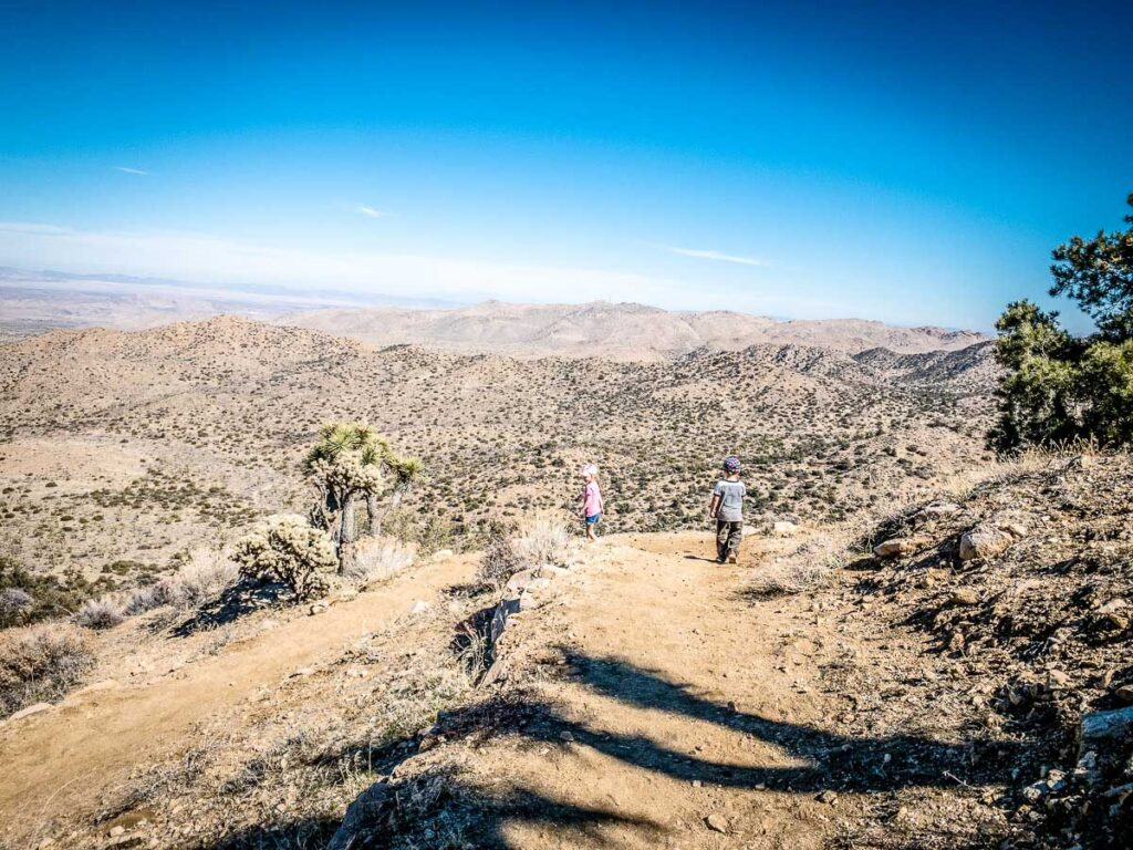 For sun safety in Joshua Tree NP, be sure to bring sun hats and lots of drinking water