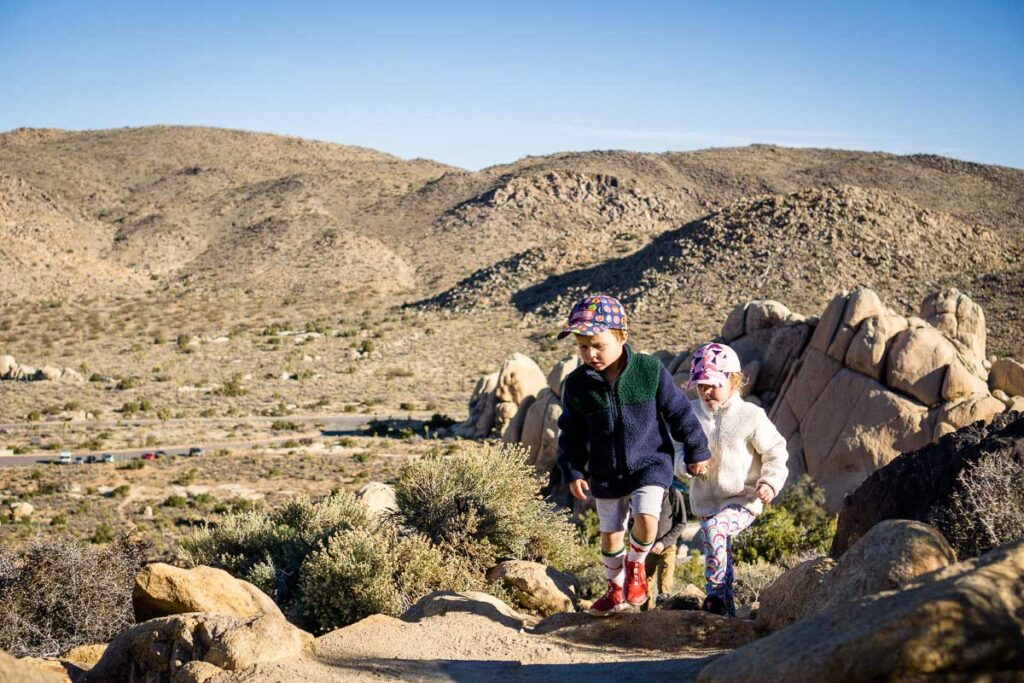 Ryan Mountain is a fun and challenging joshua tree hike with kids