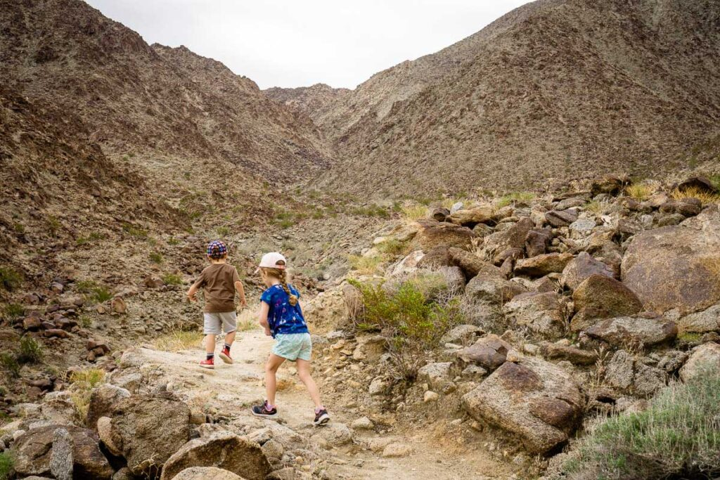 The Wilderness Trail offers family friendly hiking in Palm Desert, CA