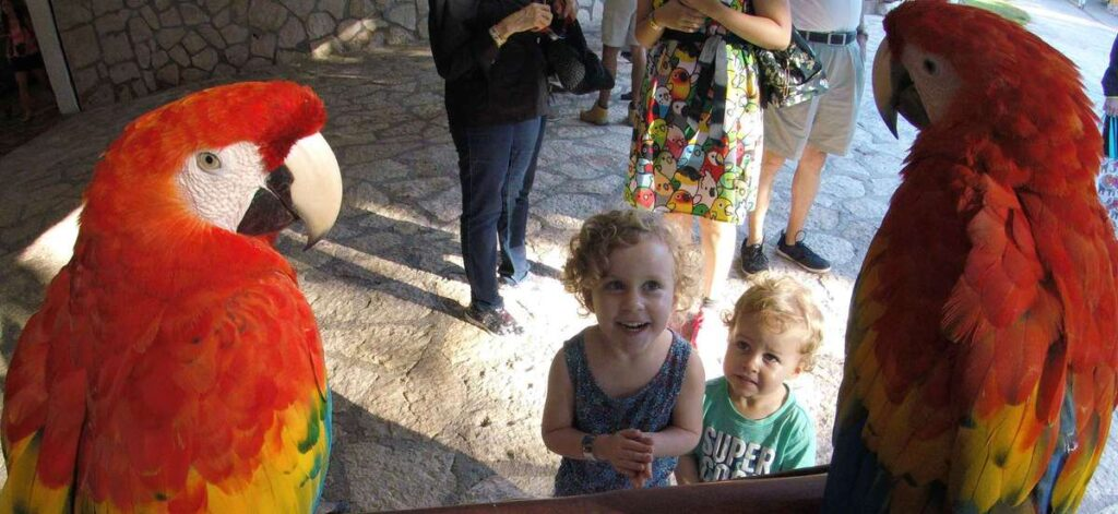 A visit to Xcaret with kids was a highlight of our month in Playa del Carmen